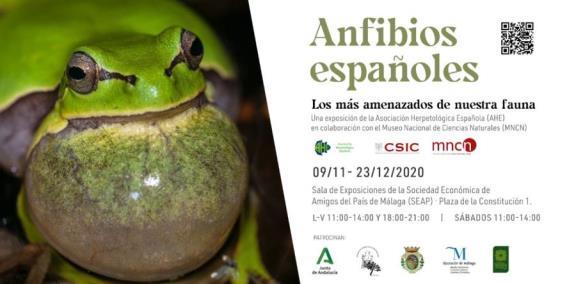 https://academiamalaguenaciencias.files.wordpress.com/2020/11/4.-inviatacion-a-exposicion.jpg